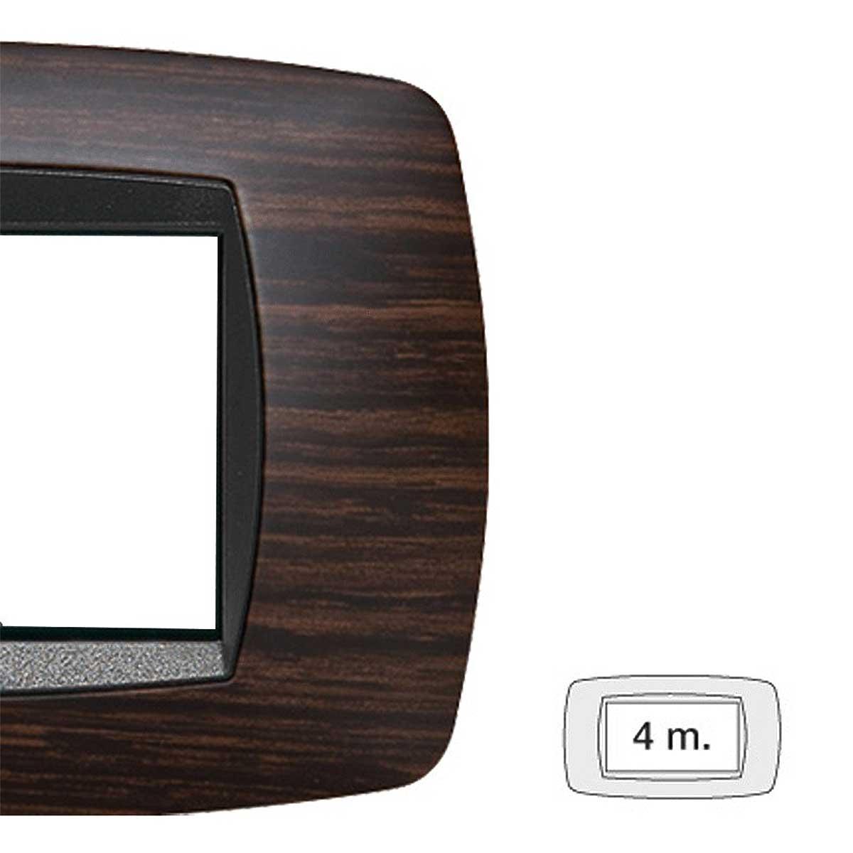 Placca master modo 4 moduli 39TC464